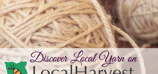 Discover Local Yarn Suppliers on LocalHarvest.org, learn more at Sakeenah.com