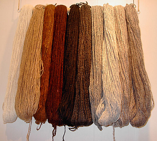 10 Reasons to Love Alpaca Yarn - Learn why this natural fiber is well loved for knit and crochet projects